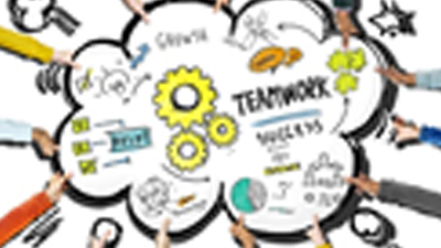 Why A Team of Business Professionals?